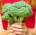 7-tips-för-att-få-i-sig-dagsbehovet-av-frukt-och-grönt